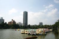 boats on shinobazu no ike.jpg